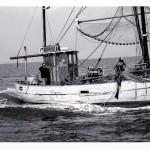 Büsumer Fischkutter beim fischen