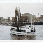 Büsum - Kutter im Hafen vor der Werft 1954
