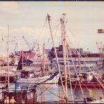 Hafenbecken2