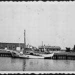 Hafeninsel